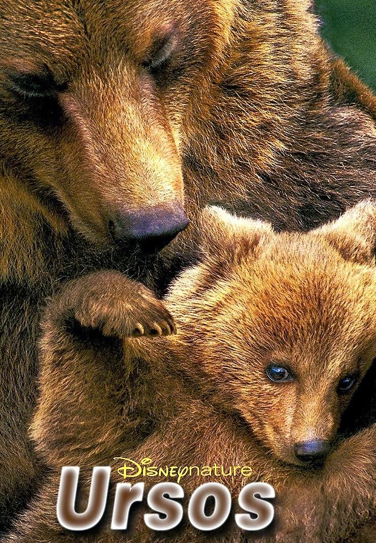 Ursos Download – Ursos – AVI Dual Áudio e RMVB Dublado (2014)