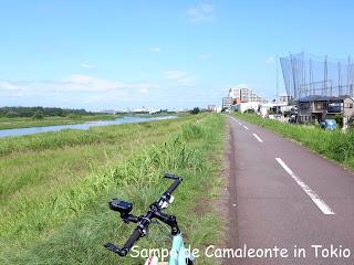 多摩川サイクリングロード左岸