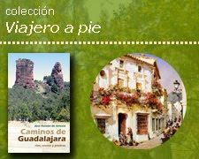 """Colección de libros """"Viajero a pie"""""""