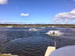 http://www.abc.net.au/news/2014-07-23/queensland-aquaculture-report/5617596