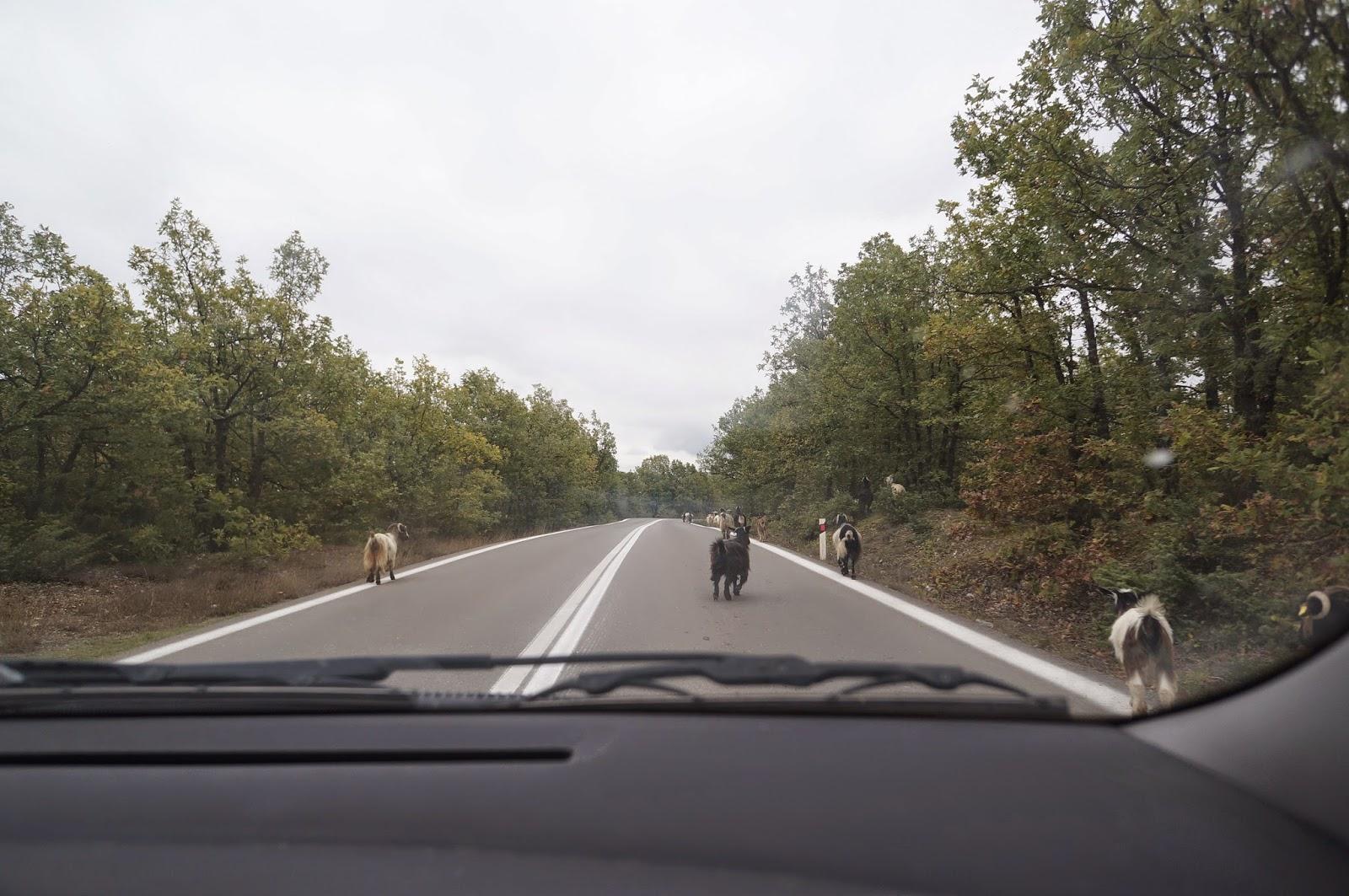 Road-to-Meteora