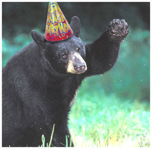 bear_happy_birthday.jpg