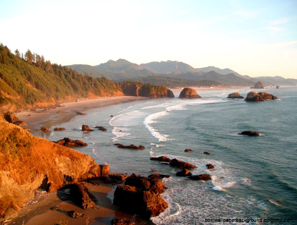 Oregon Coast danjacobs 1080275710  Grey Fuzz