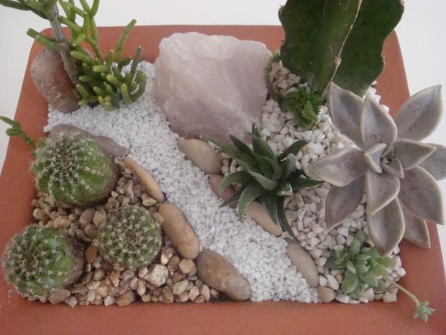 Meu Jardim ? Assim...: mais mini-jardins de cactos e ...