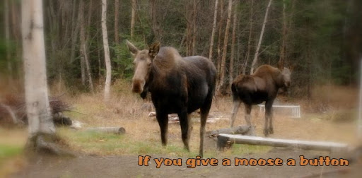 If you give a moose a button
