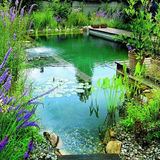 biotop natural pools garden ponds nature pools