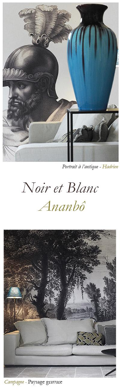 Le noir et blanc par Ananbô
