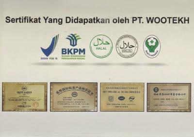 penghargaan pt.wootekh