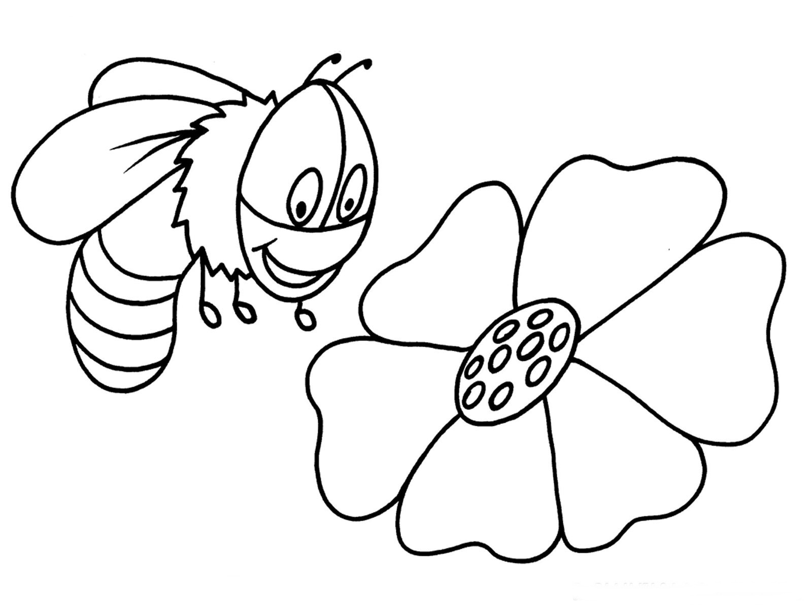 Bees Coloring Pages Realistic
