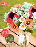 Mini catalogue printemps /été