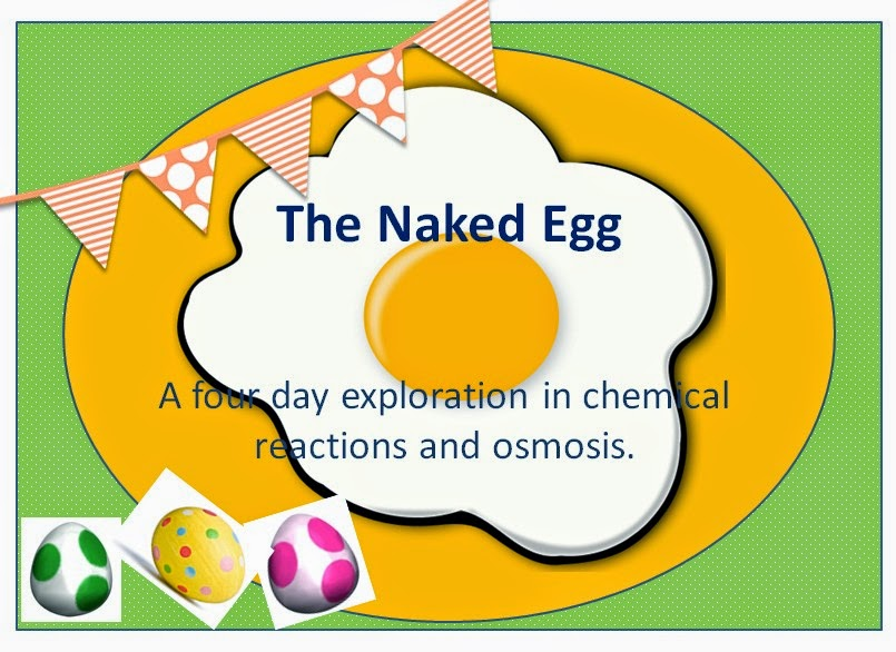 https://www.teacherspayteachers.com/Product/The-Naked-Egg-Science-Lab-Teach-Chemical-Reactions-and-Osmosis-Through-Labs-1766432