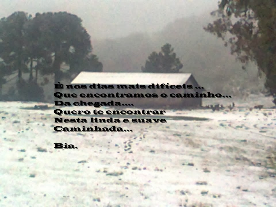 Poema e Arte/Bia Castellano.