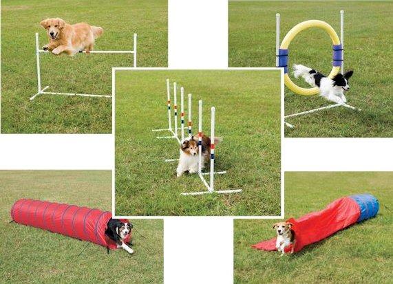Dog Trick Training Equipment