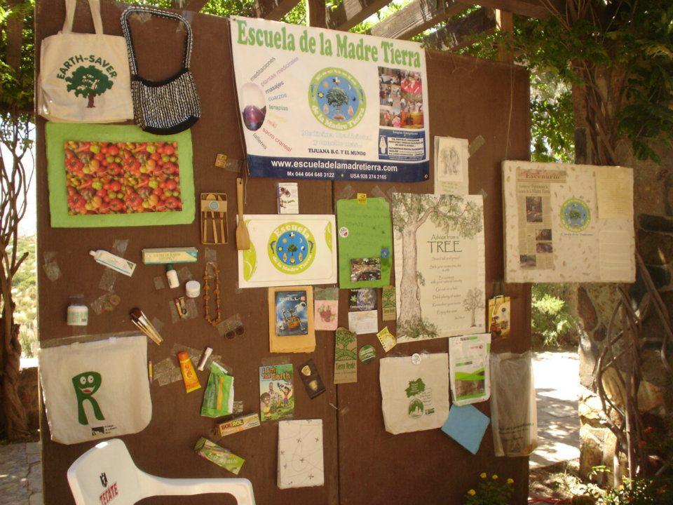 Iniciamos en 2008 nuestra primera participación en el Dia del Medio Ambiente, Tecate B.C. 2008.