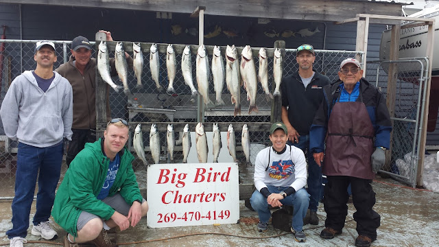 lake michigan fishing, trout, salmon, steelhead, skamania, fishing charters