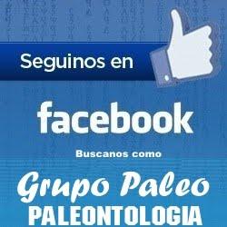 Buscanos como Grupo Paleo Paleontologia