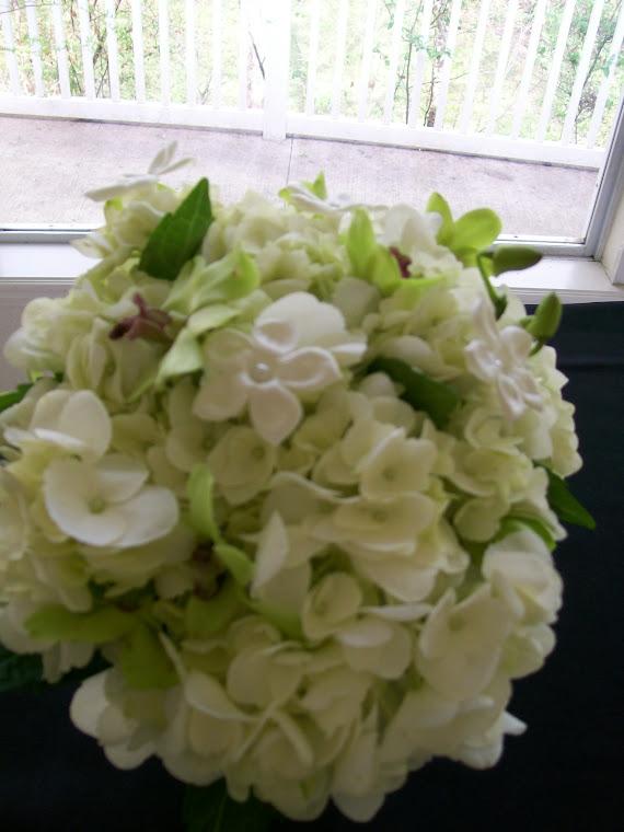 hydrangea,stephs,orchids