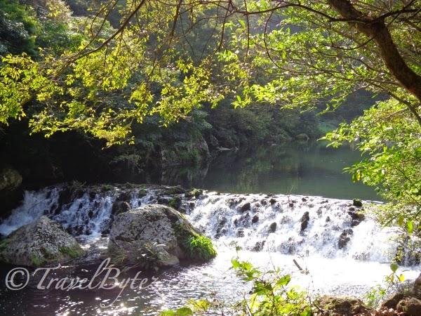 Cheonjiyeon Waterfall (천지연 폭포)