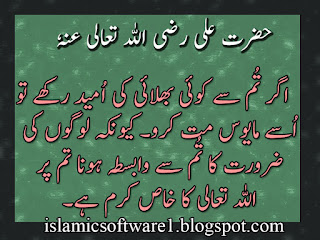 Hazrat Ali Aqwal Sayings Urdu Quotes