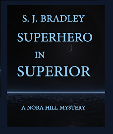 NEW!  Nora Hill Mystery #2