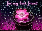 Моята приятелска награда / Mein Freundschaftsaward