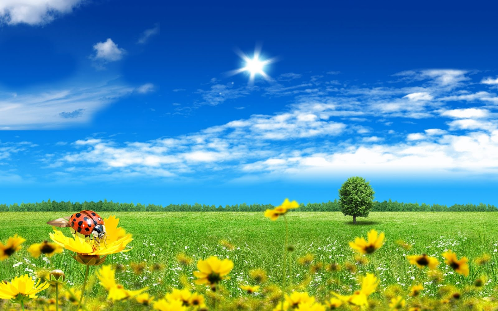 http://3.bp.blogspot.com/-pzzKBJDK2Cg/T27xORf9ZYI/AAAAAAAAFLA/9-7Xpkeqqt0/s1600/primavara_fantasy.jpg