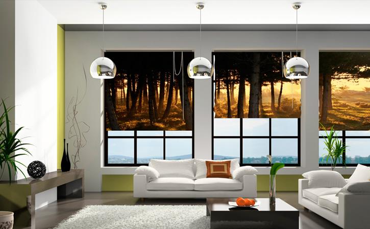 Impresi n digital en cortinas paneles japoneses y estores objetivo 3 0 - Estores con dibujos ...