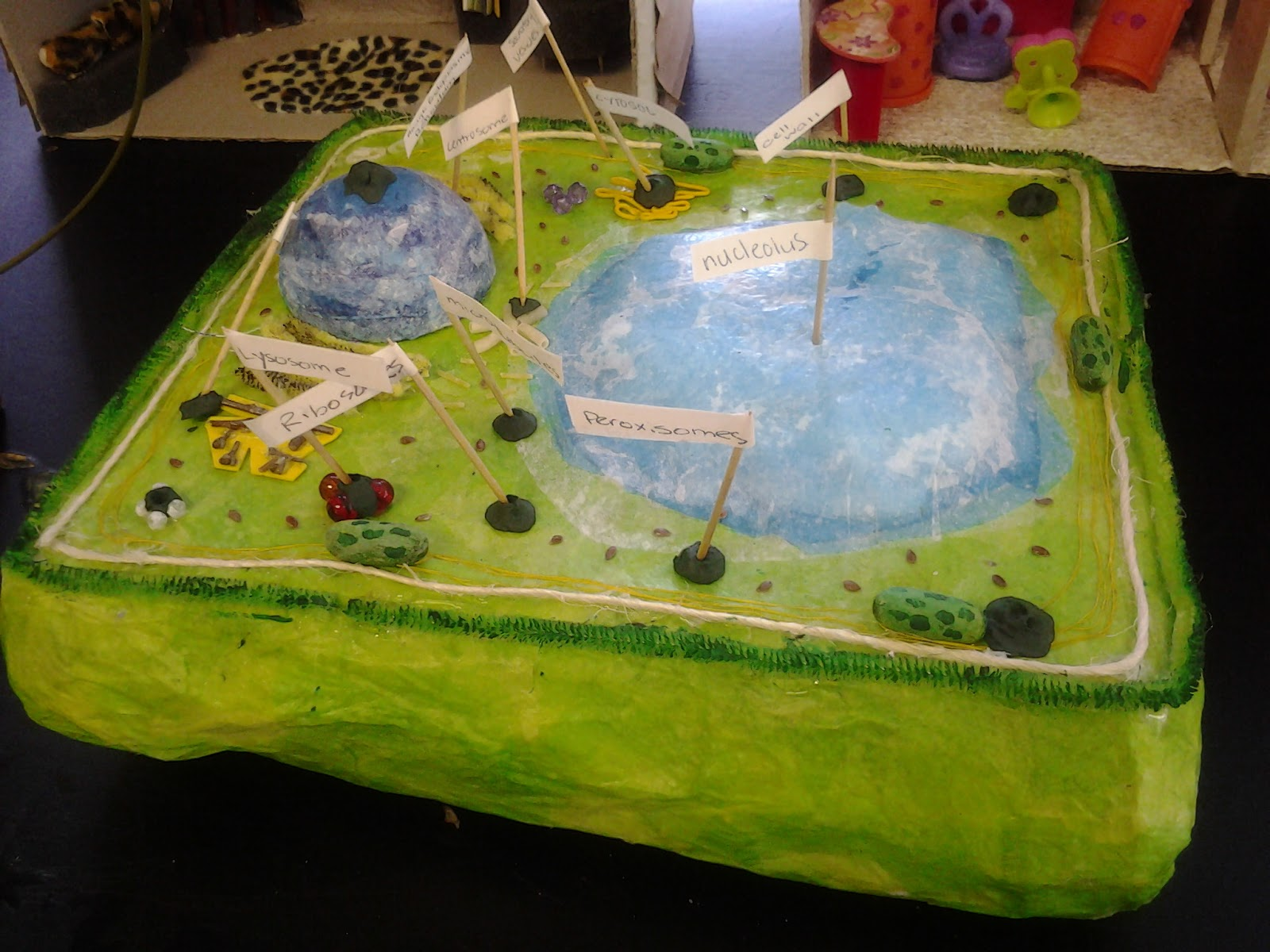 ... Academy (FSA Elementary School) 5th Grade Student Science Projects