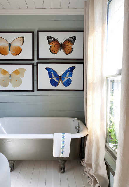 Best Bathroom Decor butterfly bathroom : To da loos: Framed butterflies in the bathroom