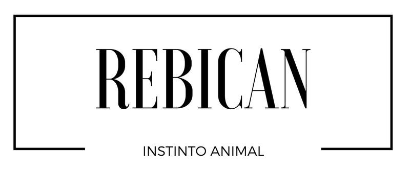Rebican. Instinto Animal