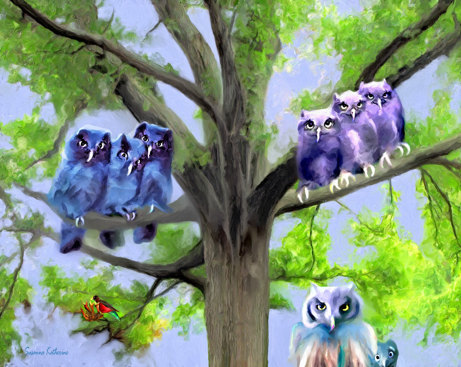 pictures of owls in trees