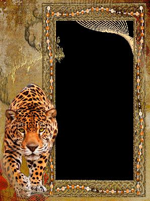 marco de foto tigre