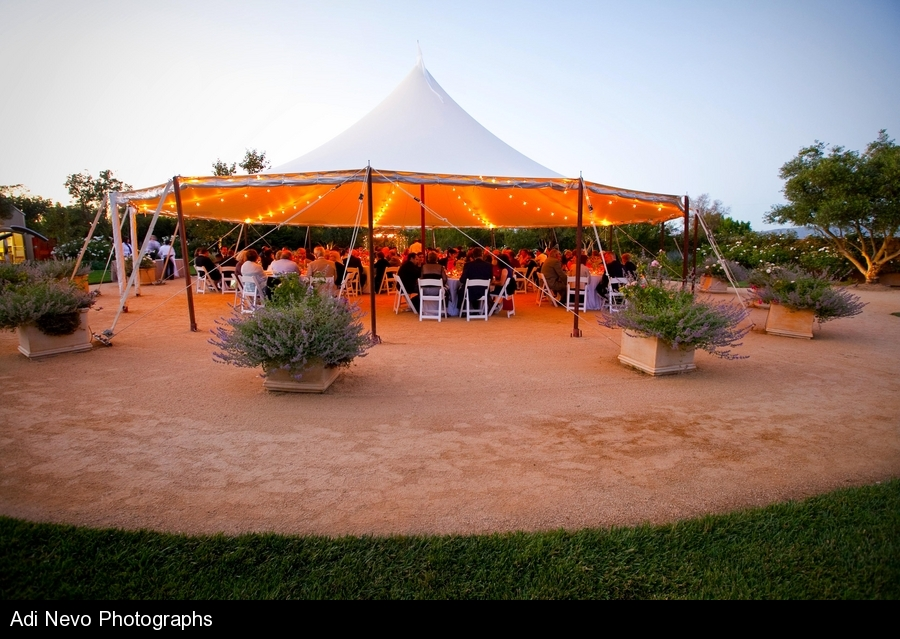 Dining In The Tent With Sage Catering