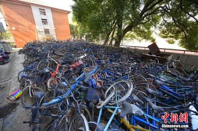 Phát hiện cả nghĩa địa xe đạp cũ trong trường học