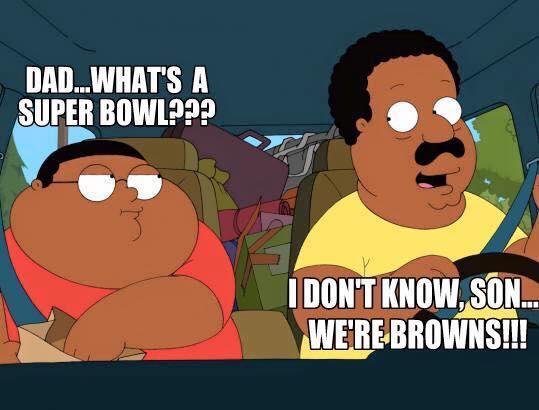 dad... what's a super bowl??? I don't know, son... we're browns!!!