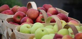 Makan buah untuk meningkatkan daya tahan tubuh