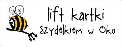 http://diabelskimlyn.blogspot.ie/2015/01/lift-kartki-szydekiem-w-oko.html