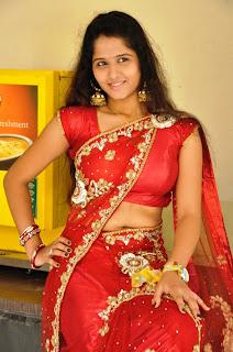 Actress Jayanthi  Saree Stills 004
