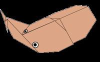 Cara Membuat Origami Kumbang Cokelat