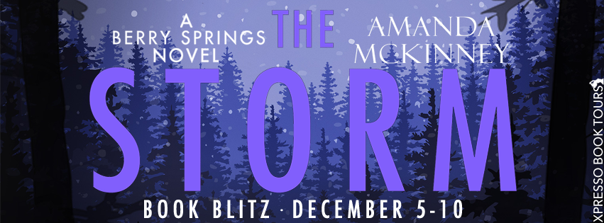 The Storm Book Blitz