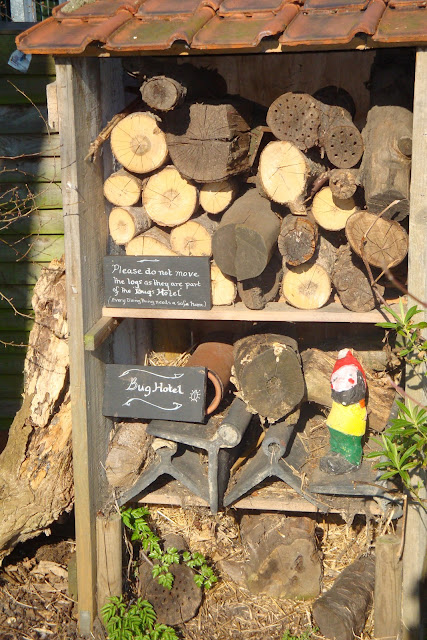 bug hotel