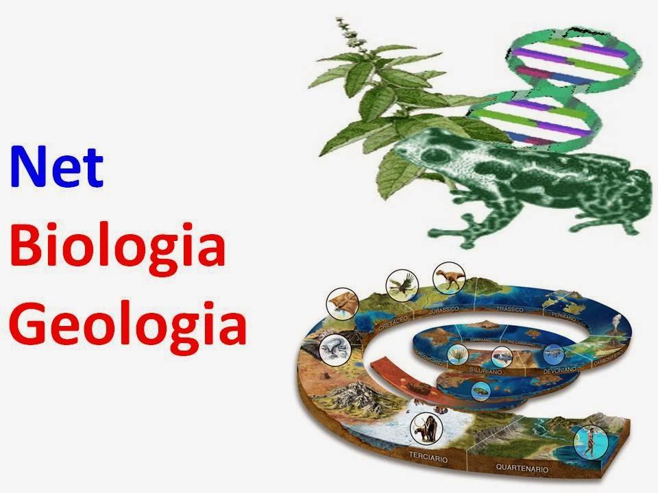 Net Biologia Geologia