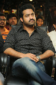 Jr NTR latest photos gallery-thumbnail-3