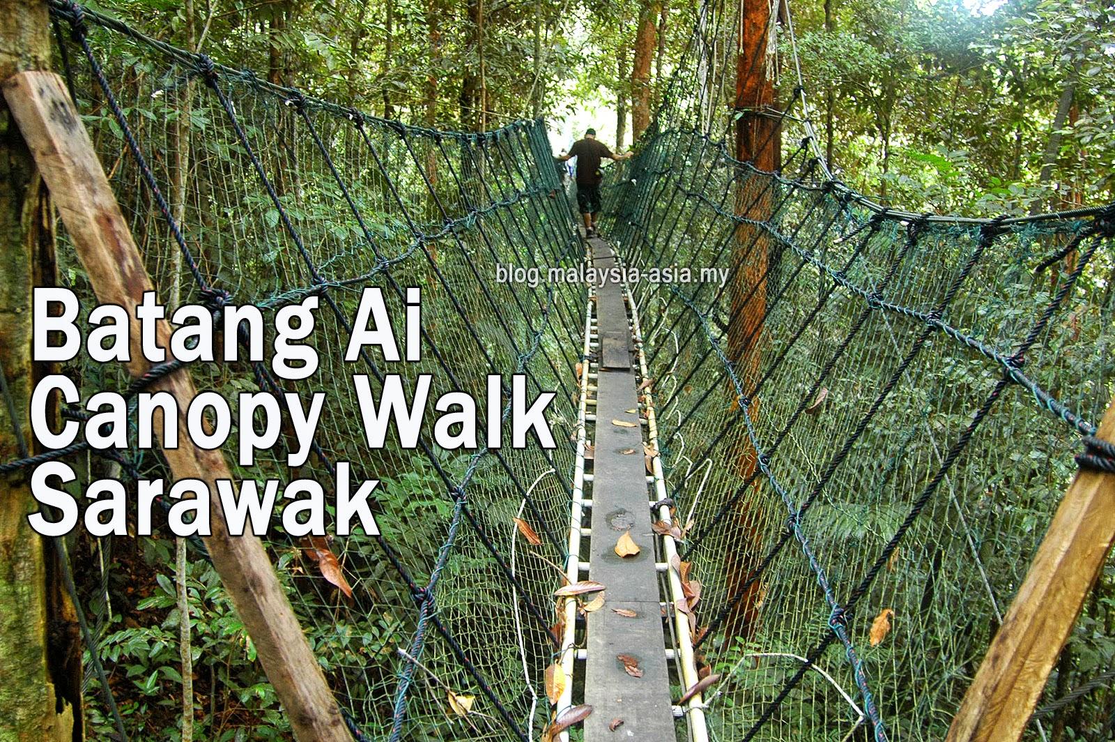 Batang Ai Canopy Walk Sarawak