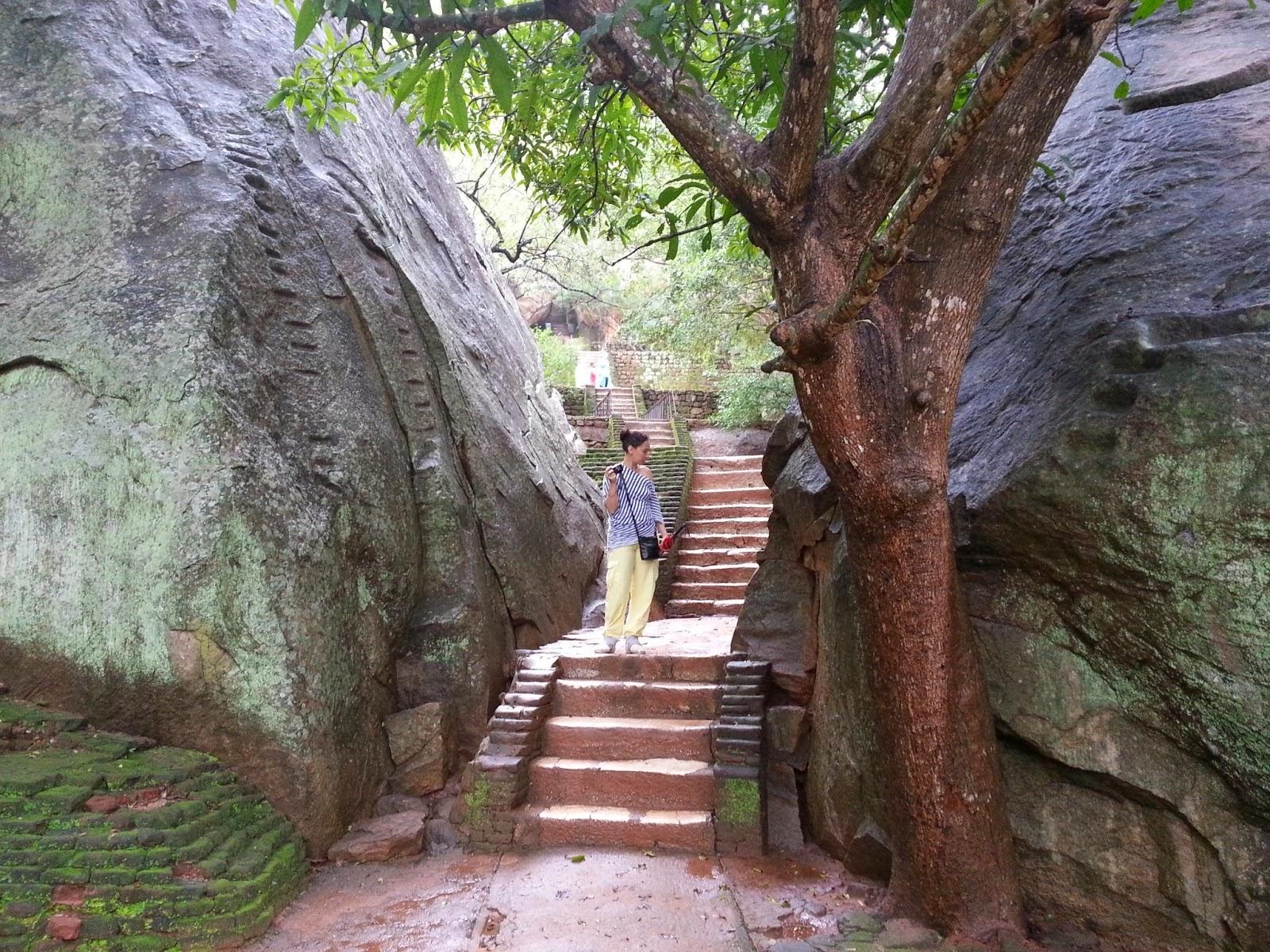 Сигирия Каменные Сады, Шри-Ланка, огромные камни вдоль извилистой тропы, мощеная дорога