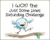 Challenges I Won