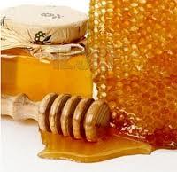 manfaat madu untu tubuh