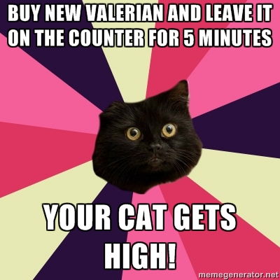 Esoteric comedy show now starring the golden dawn and angry witches true story the cat ate the valerian fandeluxe Choice Image