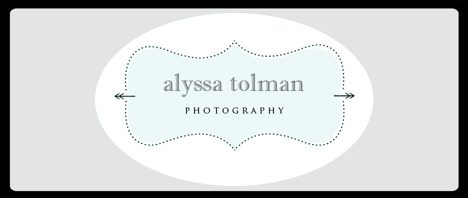 Alyssa Tolman Photography