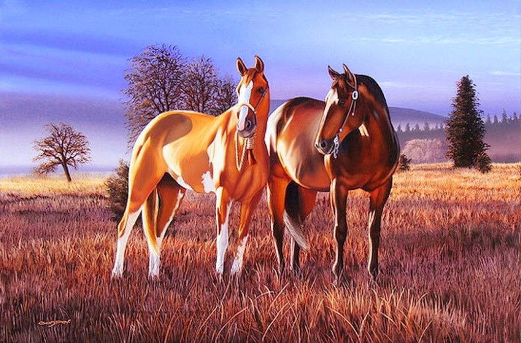 fotos-de-caballos